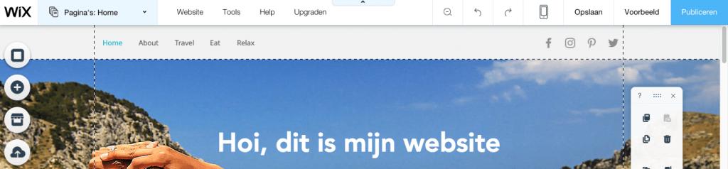 website publiceren